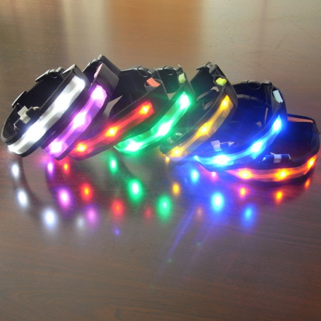 flashing led pet luminous collar